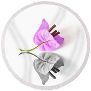 Bouganvillea Reflection Round Beach Towel