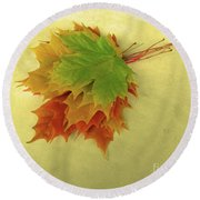Bouquet De Feuilles / Bunch Of Leaves Round Beach Towel