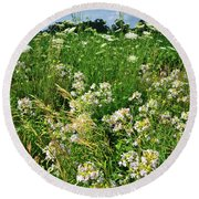 Bouquet Of Wildflowers Along Country Road In Mchenry County Round Beach Towel
