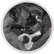 Boxer Buddies Round Beach Towel