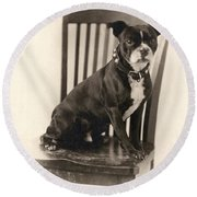 Boxer Sitting On A Chair Round Beach Towel