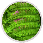 Bracken Fern Round Beach Towel