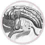 Brain And Eye, Descartes, Illustration Round Beach Towel