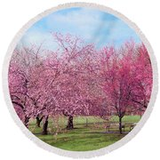 Branch Brook Cherry Blossoms Round Beach Towel