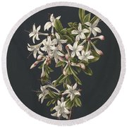 Branch Of A Flowering Azalea, M. De Gijselaar, 1831 Round Beach Towel