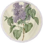 Branch With Purple Lilacs, Maria Geertruyd Barbiers-snabilie, 1786 - 1838 Round Beach Towel