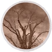 Branches Against Sepia Sky H   Round Beach Towel