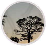 Branches In The Sunset Round Beach Towel