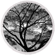 Branching Out In Bw Round Beach Towel