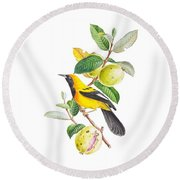 Brazilian Bird Round Beach Towel
