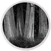 Breadth Of Trees Round Beach Towel