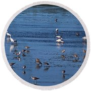 Breakfast Is For The Birds Round Beach Towel