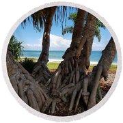 Bribie Trees  Round Beach Towel