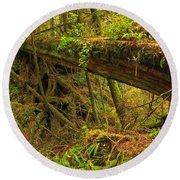 Bridge In The Rainforest Round Beach Towel