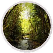 Bridge In The Rainforest Round Beach Towel