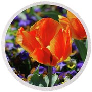 Bright And Colorful Orange And Red Tulip Flowering In A Garden Round Beach Towel