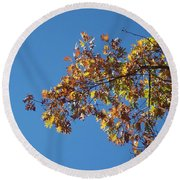 Bright Autumn Branch Round Beach Towel