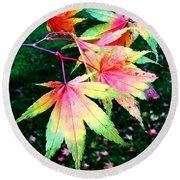 Bright Autumn Leaves Tatton Park Round Beach Towel