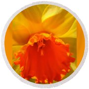 Bright, Bold Daffodil Round Beach Towel
