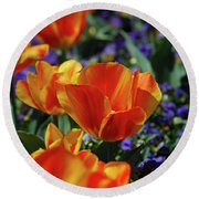 Bright Colored Garden With Striped Tulips In Bloom Round Beach Towel