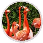 Bright Flamingos Round Beach Towel