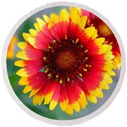 Bright Floral Day Round Beach Towel