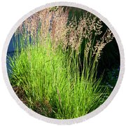 Bright Green Grass By The Pond Round Beach Towel