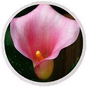 Bright Pink Calla Round Beach Towel