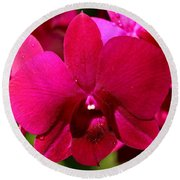 Bright Scarlet Red Orchid Round Beach Towel