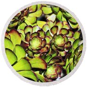 Bright Succulents Round Beach Towel