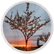 Bright Sun With Long Red Rays Shines Near The Trunk Round Beach Towel