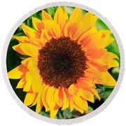 Bright Sunflower Round Beach Towel