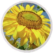 Bright Sunny Happy Yellow Sunflower 10 Sun Flowers Art Prints Baslee Troutman Round Beach Towel