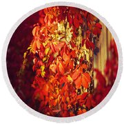 Bright Sunny Red Autumn Plants Round Beach Towel