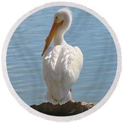 Bright White Pelican Round Beach Towel