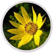Bright Yellow Flower Round Beach Towel
