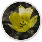 Bright Yellow Tulip Squared Round Beach Towel