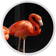 Brilliant Pink Flamingo Round Beach Towel
