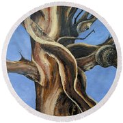 Bristlecone Tree No.4 Round Beach Towel
