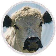 British White Cow Round Beach Towel