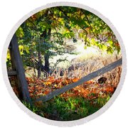 Broken Fence In Sycamore Park Round Beach Towel