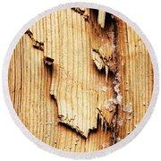 Broken Old Stump Spruce Round Beach Towel
