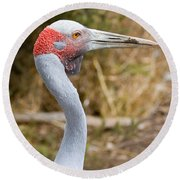 Brolga Profile Round Beach Towel