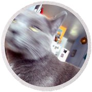 Brooklyn Cat Round Beach Towel