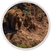 Brown Bear Watches From Steep Rocky Outcrop Round Beach Towel