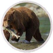 Brown Bear With Salmon Round Beach Towel