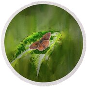 Brown Butterfly #h6 Round Beach Towel by Leif Sohlman