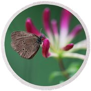 Brown Butterfly Resting On The Pink Plant Round Beach Towel