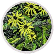 Brown-eyed Susans II Round Beach Towel