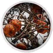 Brown Fruit Abstract Round Beach Towel